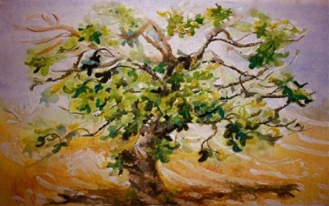 fig-tree-yvonne-ayoub