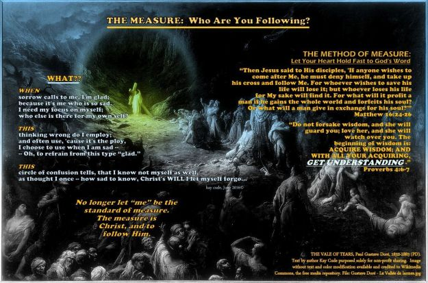 THE MEASURE OF ME: WHO ARE YOU FOLLOWING?
