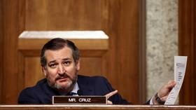 Launch voter fraud commission or we won't certify election results, Ted Cruz & 10 other Republican senators say