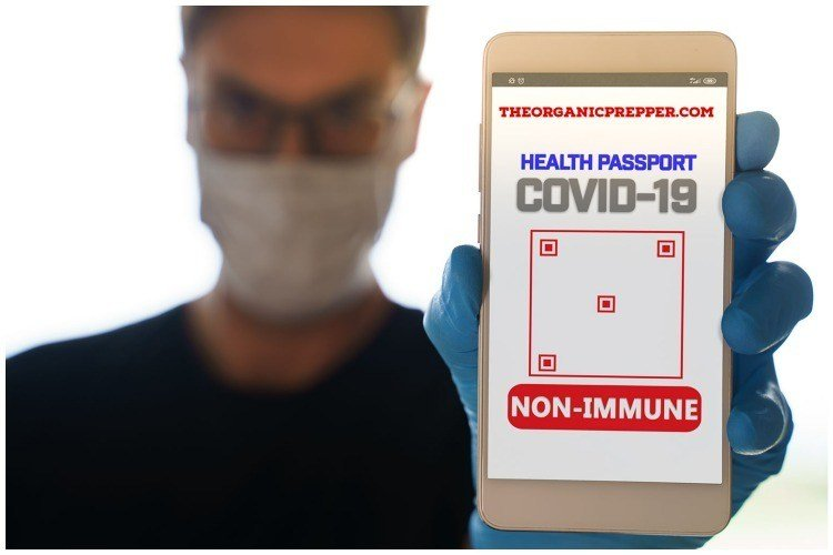 "Vaccine Passports and Health Passes: Is Showing Your ""Papers"" the ""New Normal?"""
