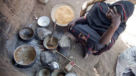At least 155 million people globally facing food crisis, with 20 million added last year – report