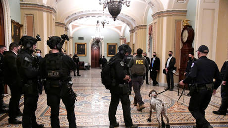 A heavy police force is evident at the Senate door after supporters of President Donald Trump breeched security at the U.S. Capitol, rioting through the Senate and House and disrupting the certification of President-elect Joe Biden, in Washington, U.S. January 6, 2021. © REUTERS/Mike Theiler